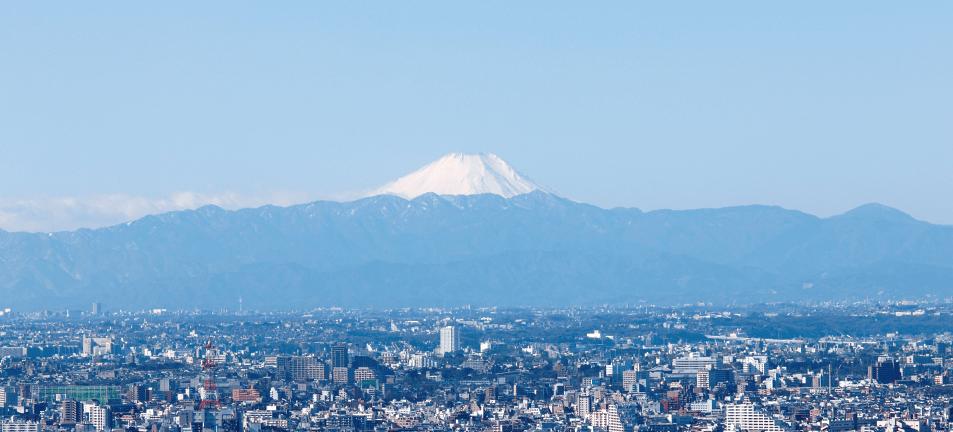 ラ・トゥール三田の眺望