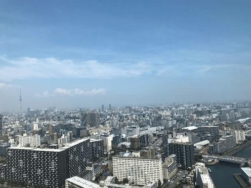 シティタワーズ豊洲ザ・ツインの眺望