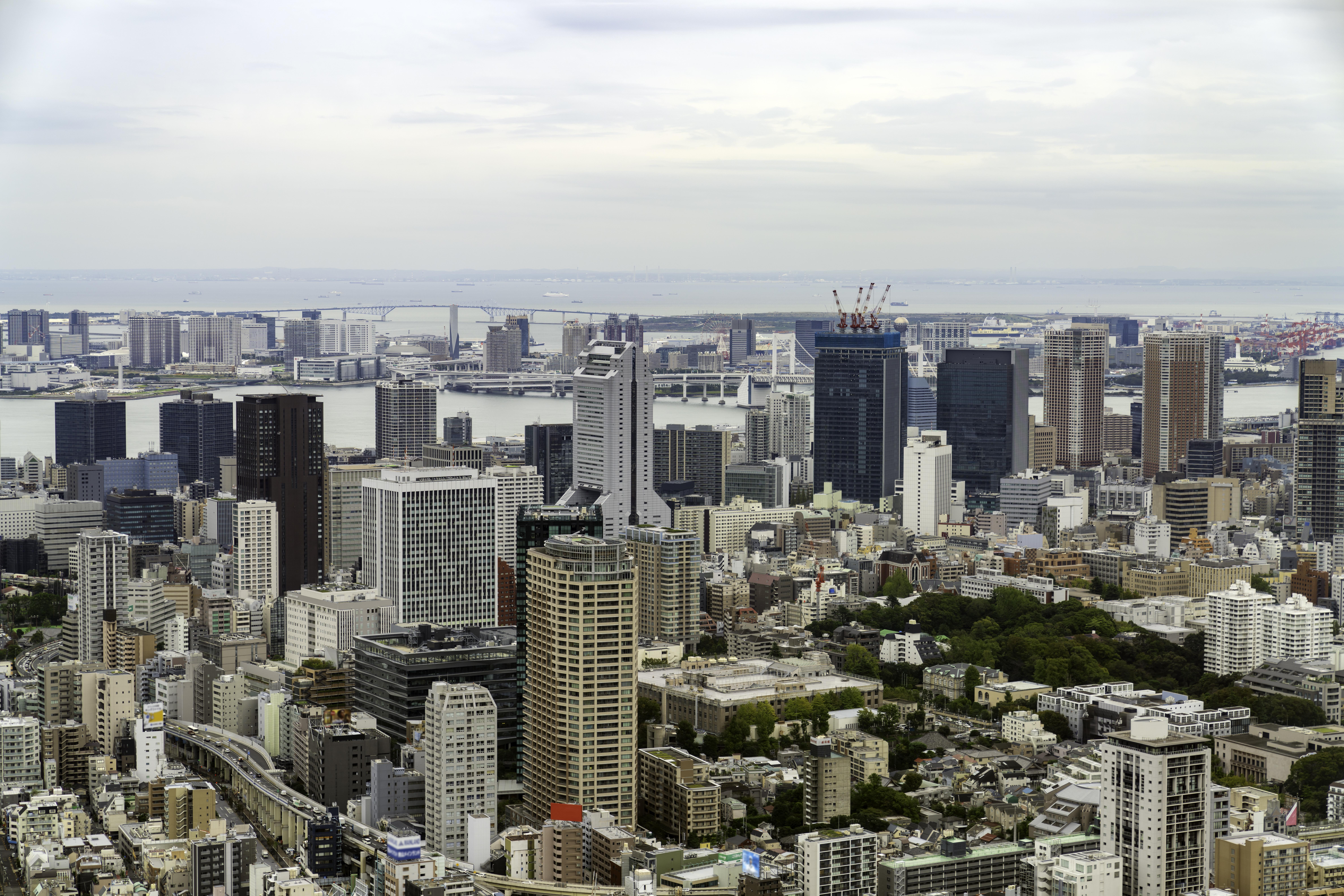 三田タワーマンションのアイキャッチ
