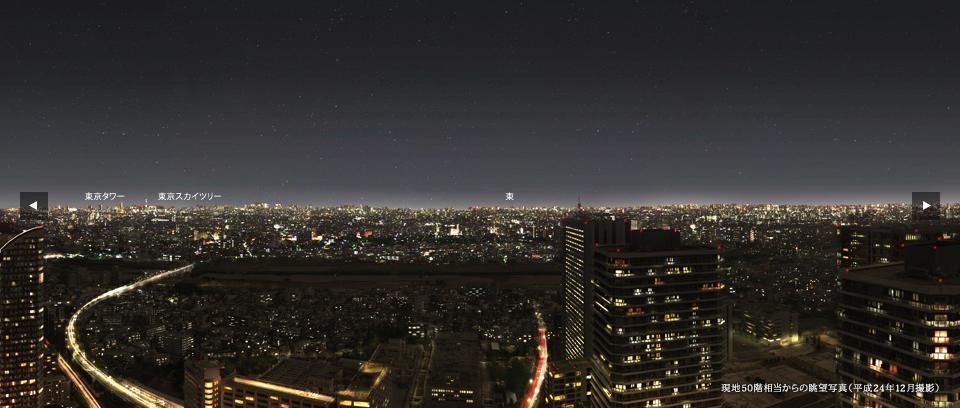 シティタワー武蔵小杉の眺望