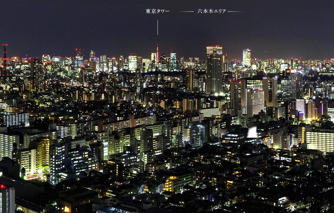 ラ・トゥール新宿ガーデンの眺望