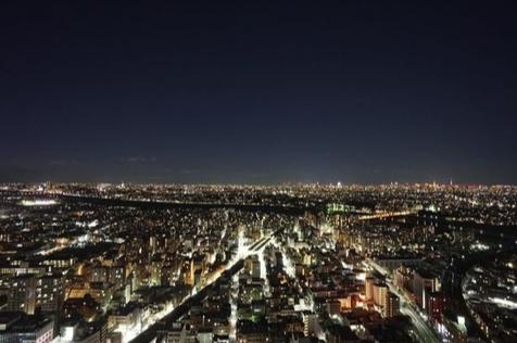 パークシティ武蔵小杉ステーションフォレストタワーの眺望