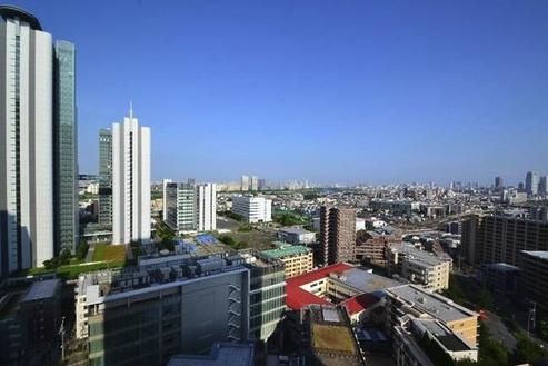 ザ・コスギタワーの眺望