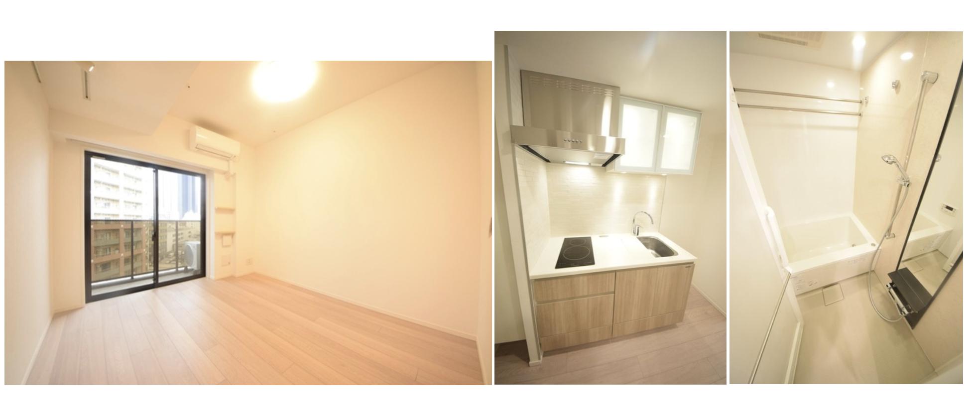 パークキューブ西新宿の室内(1K)