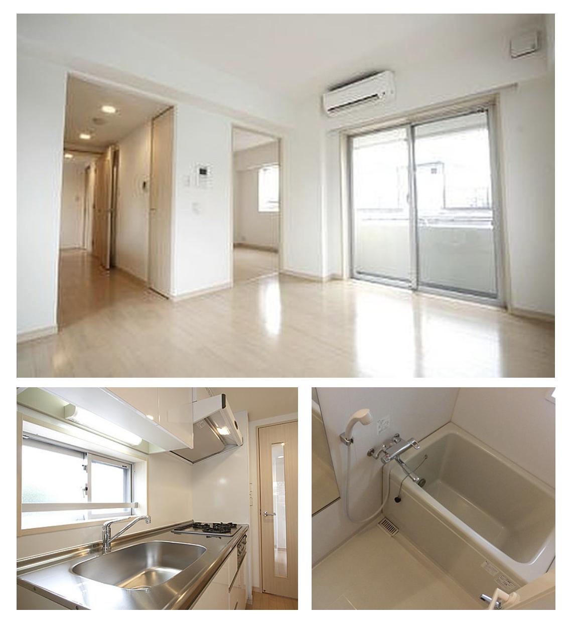 レジディア西新宿Ⅱの室内(1LDK)