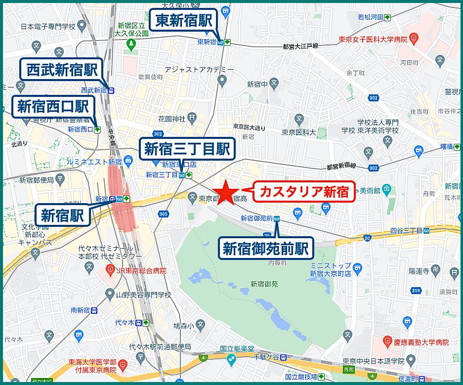 カスタリア新宿の立地