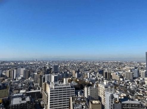 ザ・タワー・グランディアの眺望